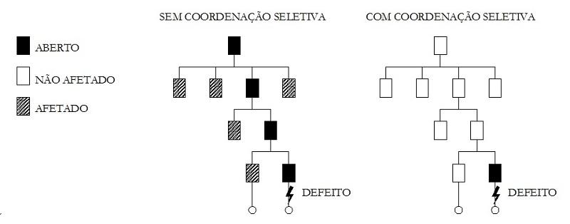 Coordenação e seletividade o que é - O que é coordenação e seletividade?